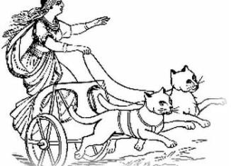 коты в колеснице