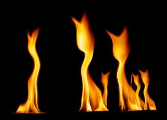 спасение кошек на пожаре