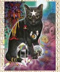 magic_cat