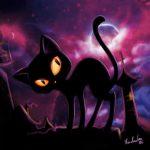 Чёрные кошки: мистические и обаятельные