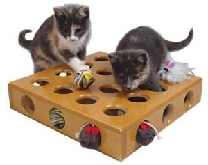 Как сделать игрушки для котенка?