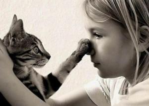 Запахи, отпугивающие кошек