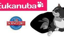 Корм для кошек Эукануба (Eukanuba): обзор, отзывы, рекомендации
