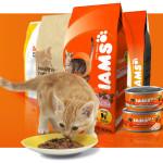 Корм для кошек Ямс (Iams) – обзор, отзывы, рекомендации