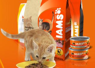 корм для кошек Ямс
