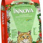 Корм для кошек Innova Cat and Kitten — обзор, отзывы