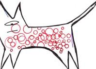 как лечить свищ у кошки