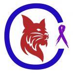 Опухоли молочной железы у кошки: причины, симптомы и лечение