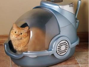 автоматический лоток для кошек
