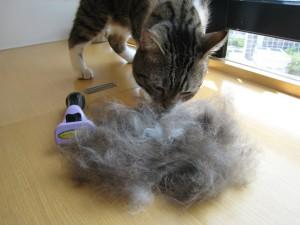 фурминатор для кошек отзывы