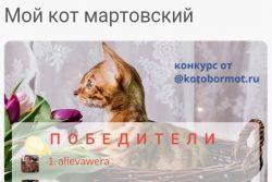 Итоги конкурса Мой кот мартовский
