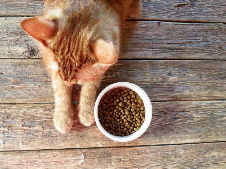 Сухой корм для кошек Applaws