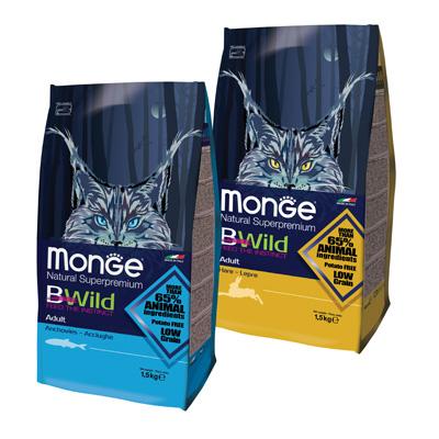 Обзор сухого корма Monge