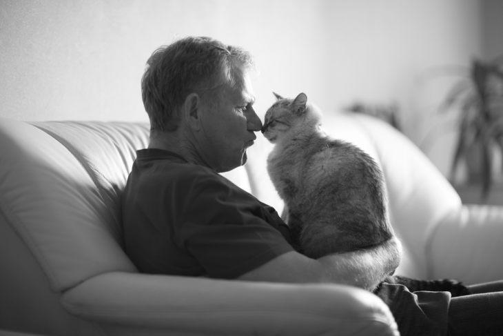 Гомеопатия для кошек: стоит ли использовать гомеопатические препараты?