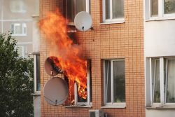 Как кошек спасают на пожаре в США и у нас, в России