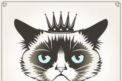 Грампи Кэт — сердитый кот-миллионер