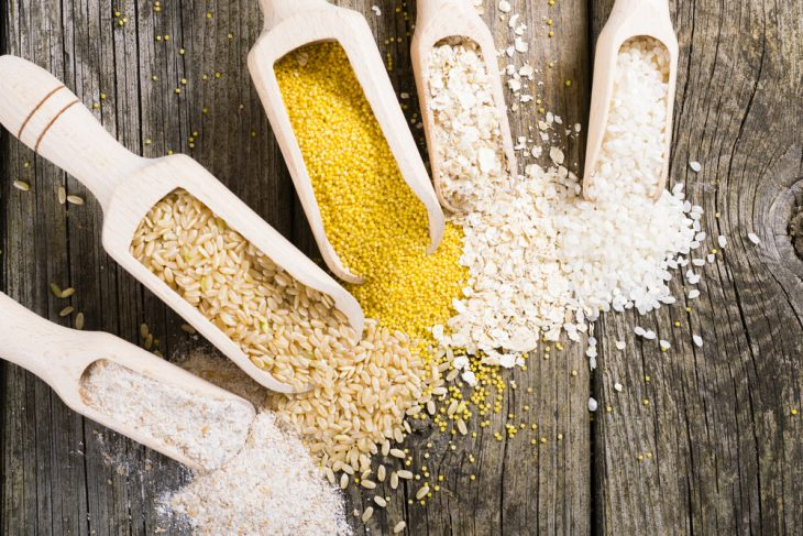 Обзор влажного корма Nero Gold