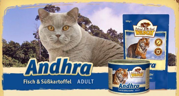 Обзор консервированного корма Wildcat