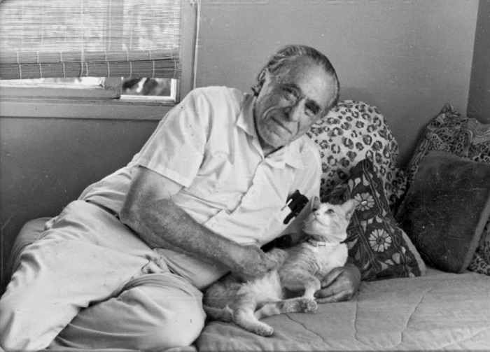Коты писателей — фото писателей и их кошек