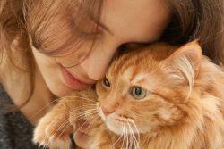 Как правильно гладить кошку?